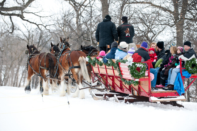 Sleigh ride tours of Viking Ship Park have been ongoing for over 20 years