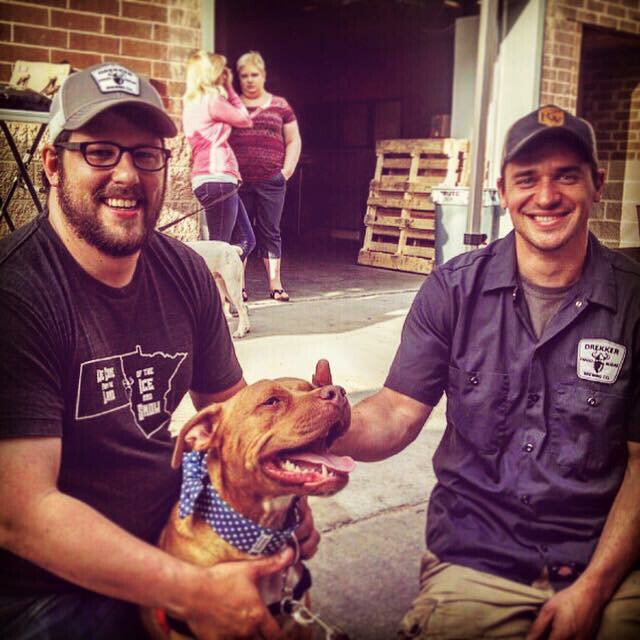 Drekker Brewing Company co-founders Mark Bjornstad and Darin Montplaisir host Pints for Pups, to introduce dogs available for adoption to potential parents. Photo courtesy of Drekker Brewing Company / Special to The Forum
